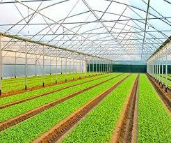 Varie per agricoltura